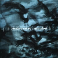 So Much is Lost cover artwork
